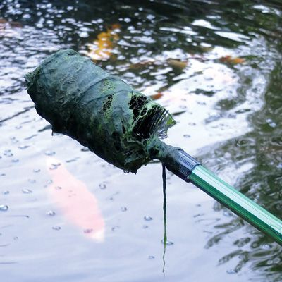 Pondxpert pond net system blanketweed brush head and 1 8 for Dechlorinator for koi ponds