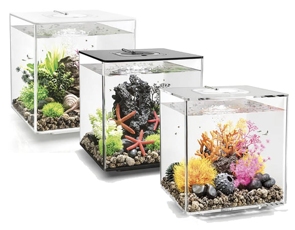 biorb cube fish tanksare from the biorb aquarium range