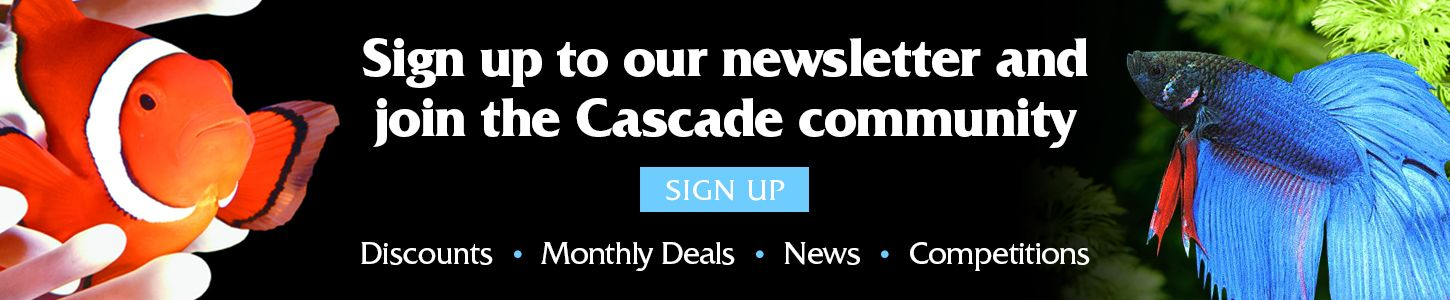 Join our mailing list and become a member of the Cascade Community