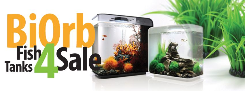 biorb,biorb fish tanks,biorb aquariums